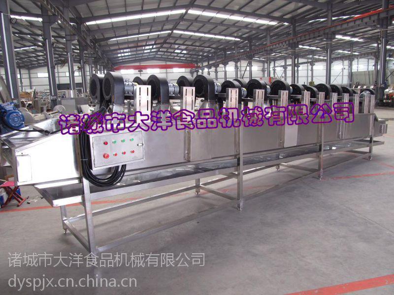 大型蚕豆风干线,专业蔬菜风干机--大洋机械
