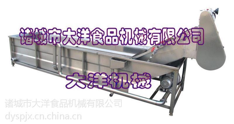 气浪式滑子菇清洗机 大型仿手工洗菜设备