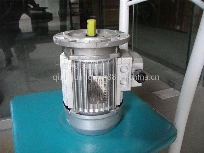 上海德东电机 厂家直销 YS5024 380V B14 小功率铝壳电动机