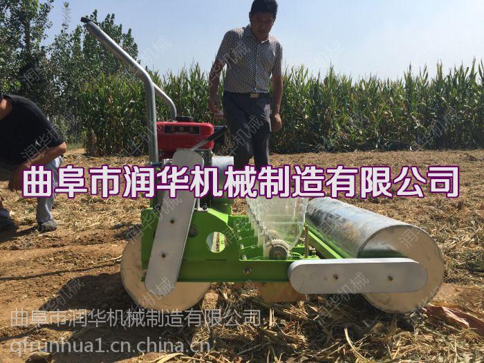 油麦菜专用播种机 行数新型定做播种机 菜籽单粒快速种植机