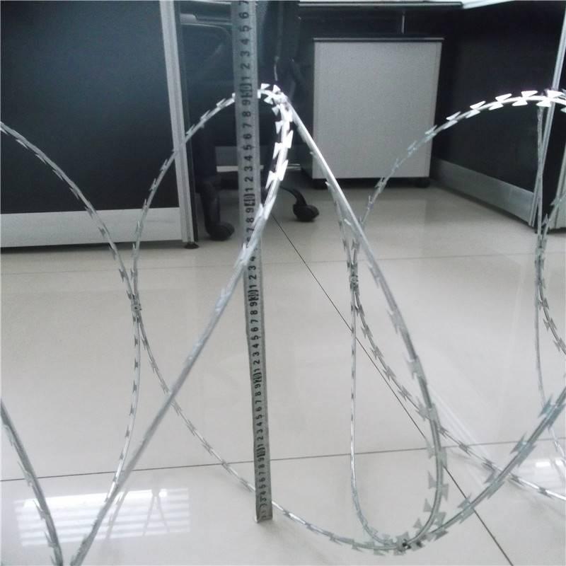 刀片滚笼安装 监狱刀片滚笼 天津刺绳