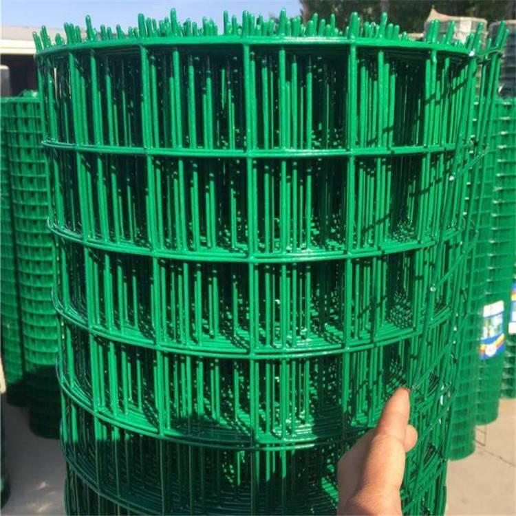 安平荷兰网区别 PVC涂塑荷兰网价格 呼和浩特铁丝网