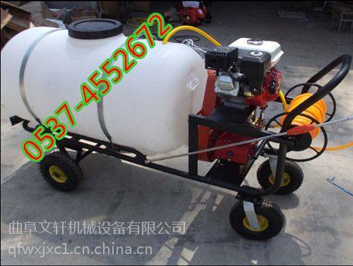 蔬菜基地打药机 农用水稻喷药打药机 喷雾器