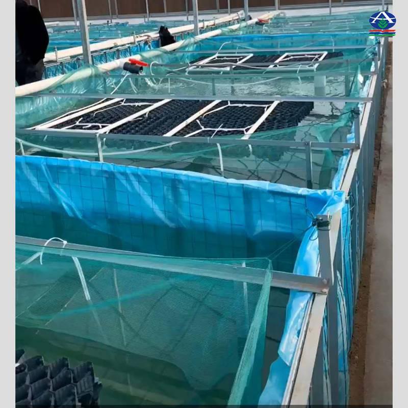 环保生态鳝鱼养殖巢 黑色塑料片实心串杆 湖北鳝巢现货 【 河北华强】