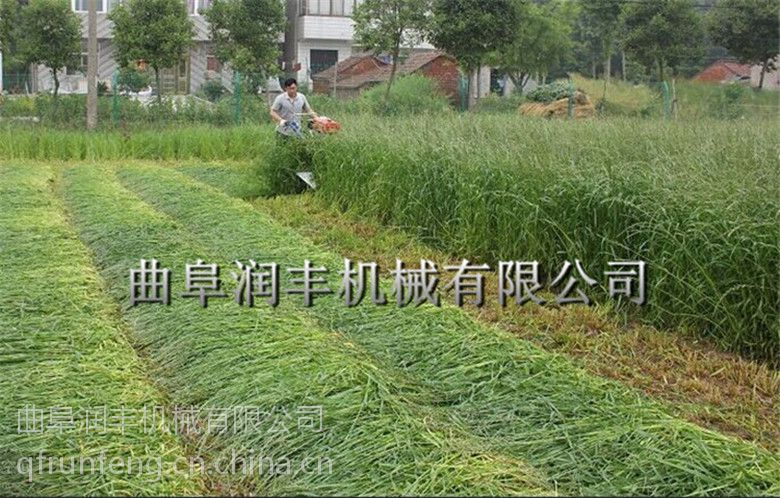 薄荷青稞割晒机 润丰 收割水稻玉米收割机 割台价格