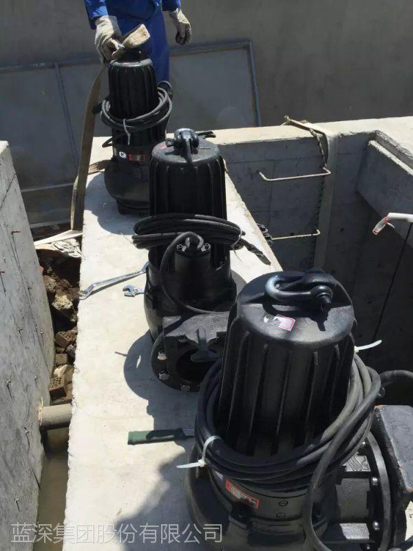 南京蓝深AS30-2CB潜水排污泵