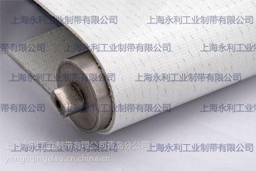 喷涂线耐溶剂耐腐蚀PE输送带