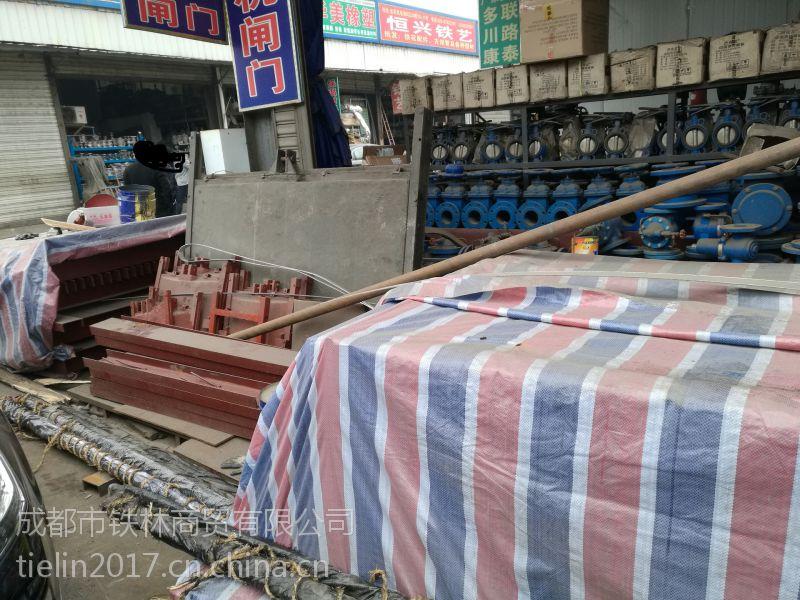 PGZ平面铸铁闸门巴中厂家