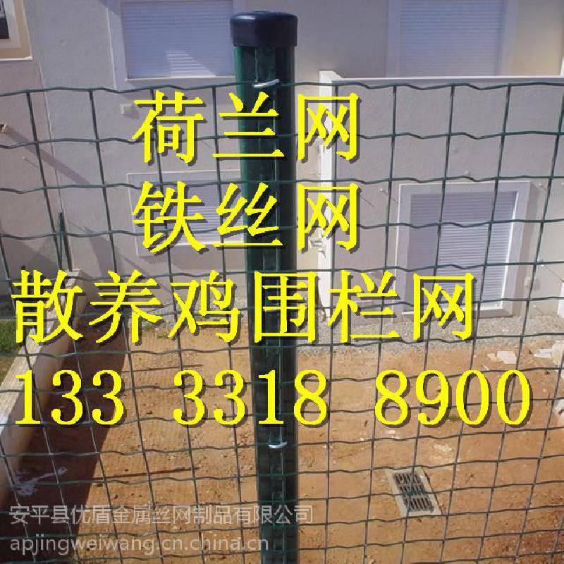 铁网围栏一捆价格 绿色围网湖南拦鸡隔离栏圈果园网优盾荷兰网