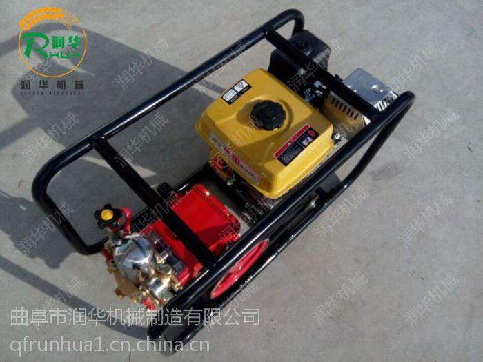 手推式汽油喷雾机 小型电动喷雾器 山地树木打药机