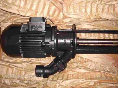BRINKMANN冷却液泵SAL 404/520-2MXZ-624--大量促销