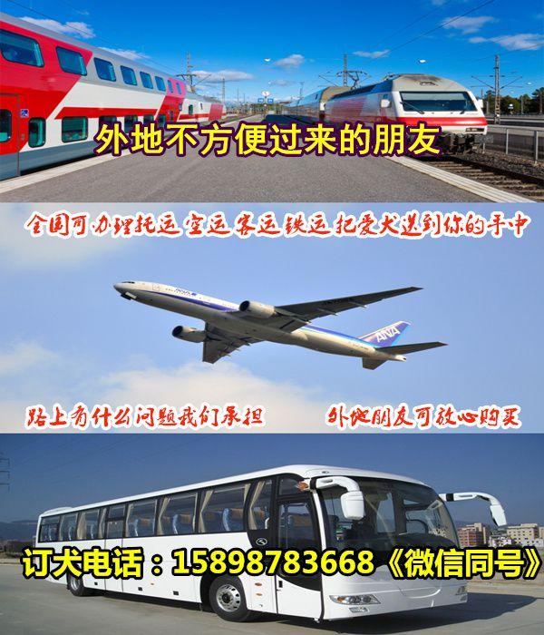 http://himg.china.cn/0/4_1001_243278_600_700.jpg