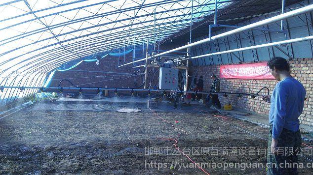 邯郸温室大棚小型育苗无级调速自走式全自动喷灌机水车厂家--邯郸兴峰