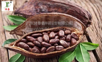 【上海华宝孔雀】厂价直销食品饮料烘焙产品巧克力香精YQB447