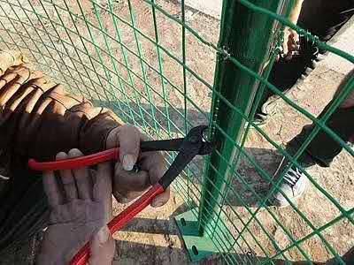 果园防护围网 绿色圈地养殖网 安平荷兰网铁丝网厂家