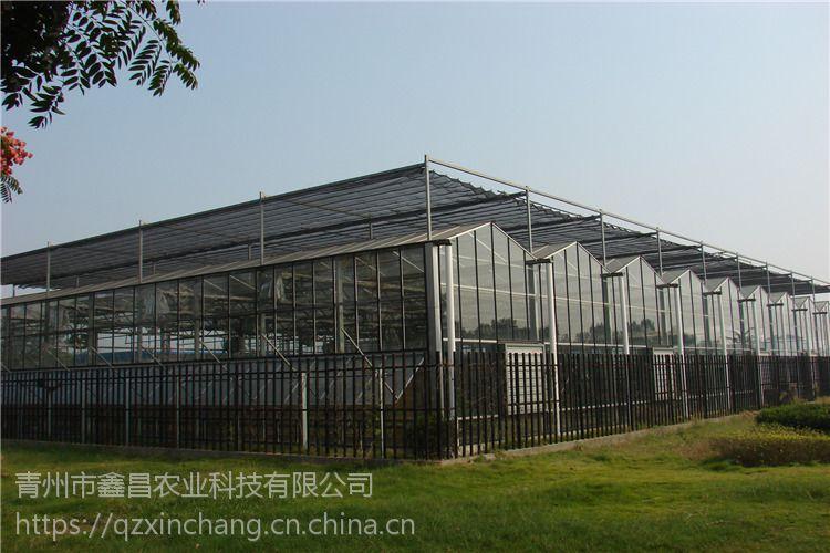 甘肃金昌光伏智能玻璃温室阳光房、8米一跨度型建造报价