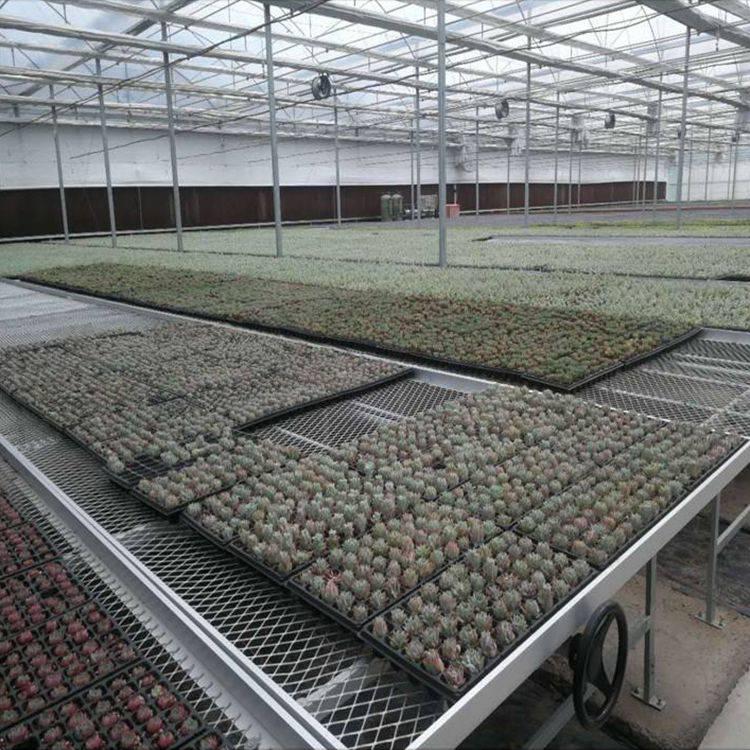 质优价廉 整体苗床 热镀锌工艺苗床厂家-汉明苗床网厂家直销