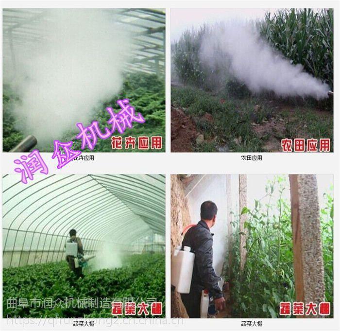 南方用大容量药壶弥雾机 可以旋转360度喷药的弥雾机润众