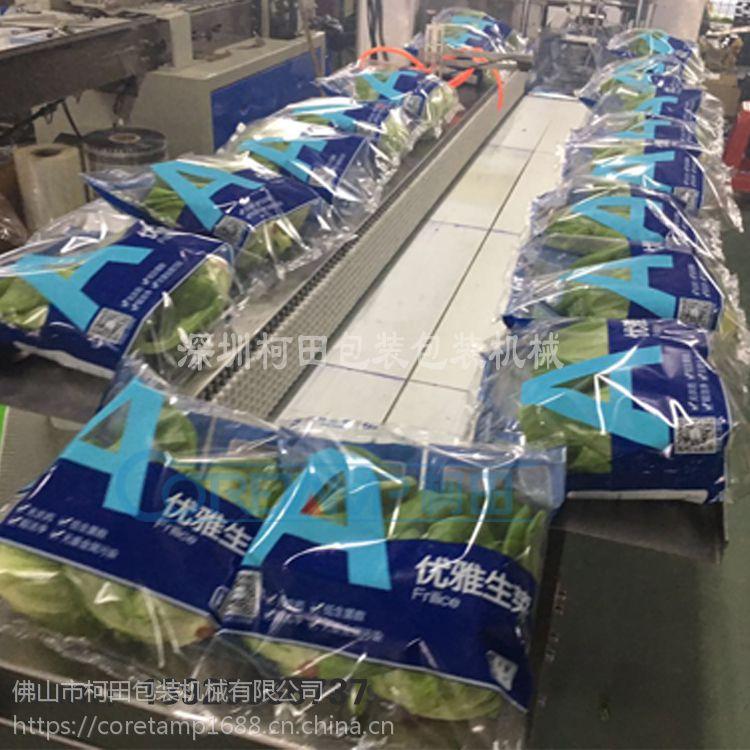 供应防雾膜蔬菜包装袋 蔬菜自动打包装机 上门安装售后
