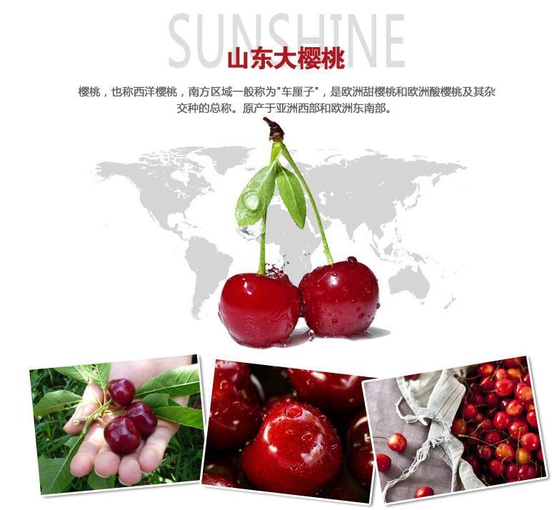 http://himg.china.cn/0/4_103_240986_773_714.jpg