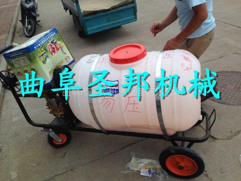 手推式汽油喷雾打药机 高效率杀虫打药机 山地种植打药机 喷雾打药机