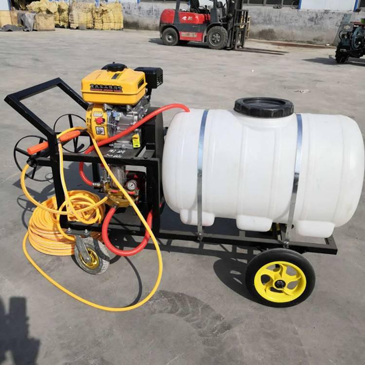 电动喷雾器_手推式农用电动喷雾器果林泵打药机植保机械