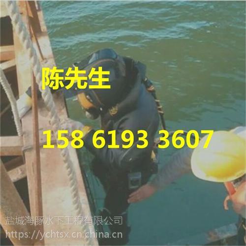 海豚水下(图)_沉管施工方案_沉管施工