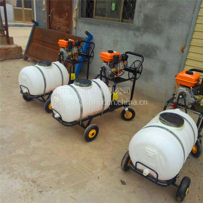 园林绿化专用打药机 手推汽油打药机 普航汽油手推式喷雾器价格
