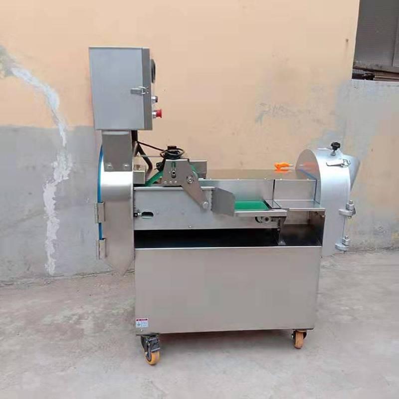 不锈钢型胡萝卜切丁机 启航牌灵芝切条机 不锈钢韭菜切段机