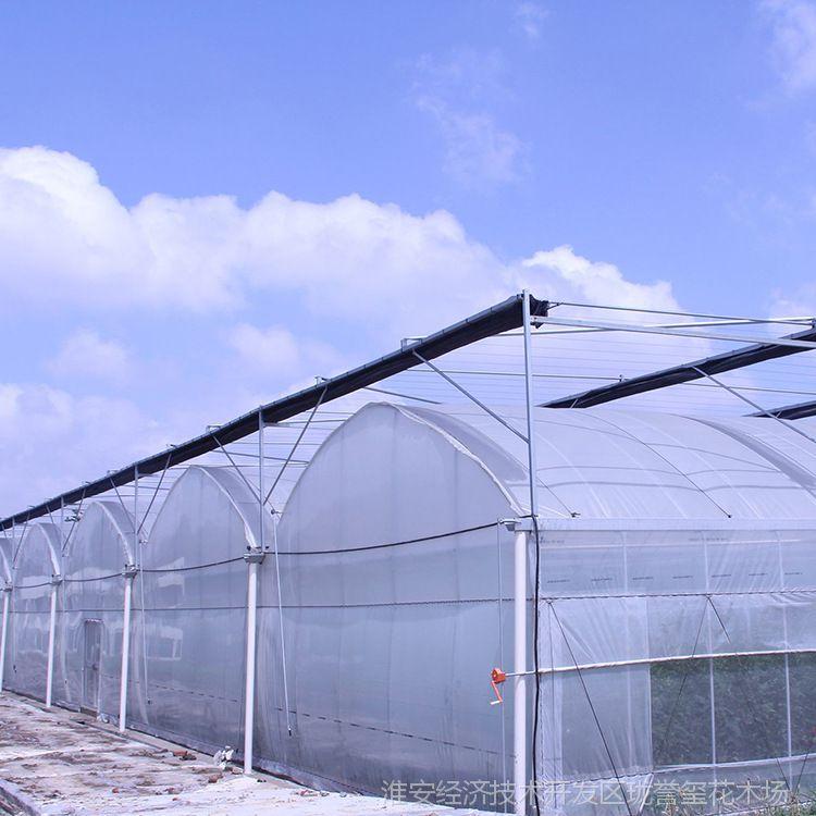 产家批发Pe塑料大棚膜 优质耐用保温长寿无滴抗老化薄膜 园林资材