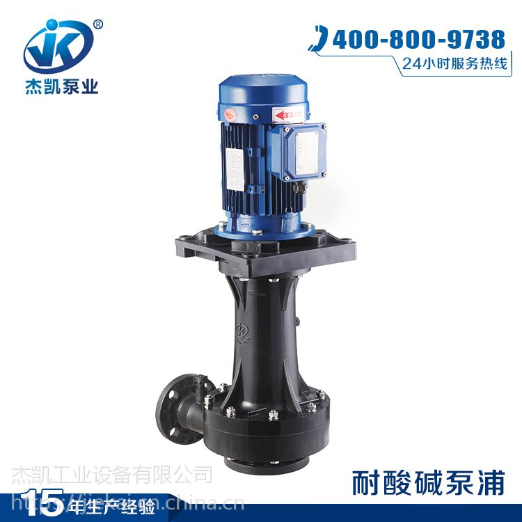 涂装前处理专用直立式耐酸碱泵 昆山380V单级化工泵