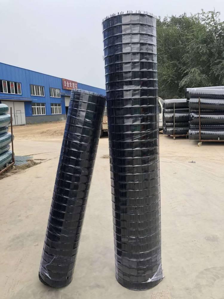 安平环航防护网 绿色养殖网 包塑养鸡电焊网