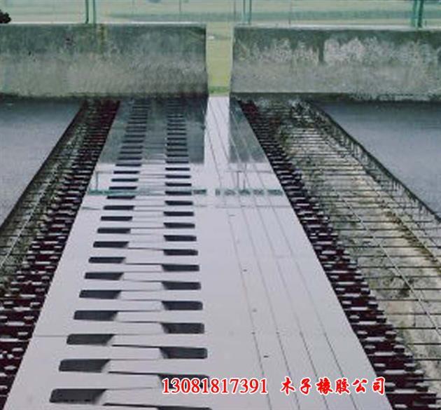 http://himg.china.cn/0/4_117_1090257_630_585.jpg