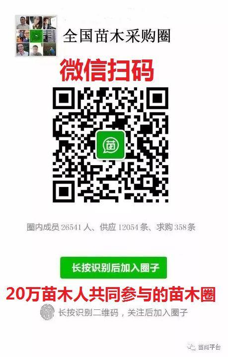 http://himg.china.cn/0/4_11_235618_459_720.jpg