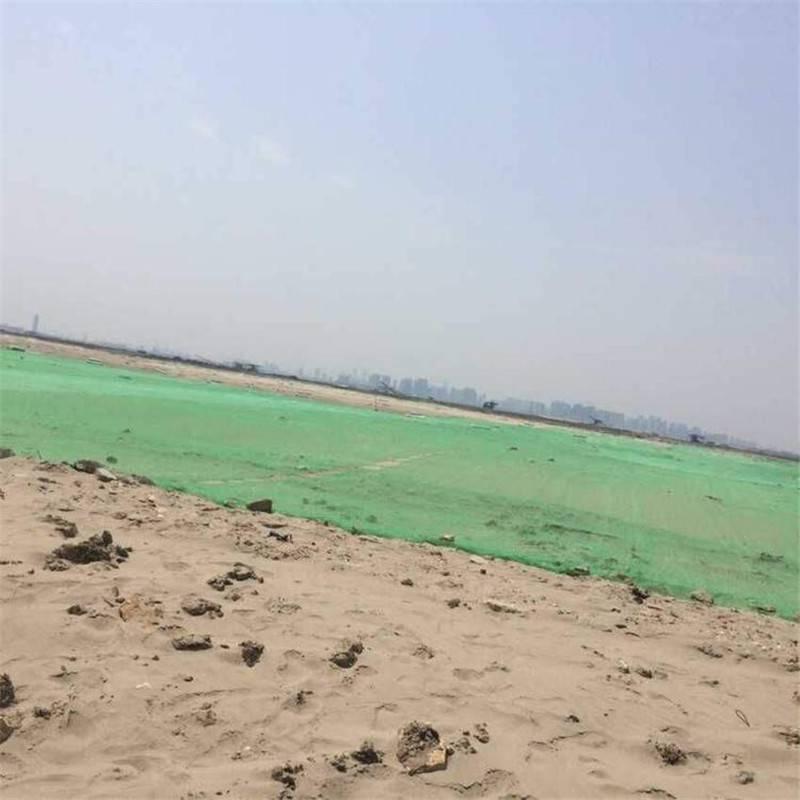 绿色盖土防尘网价格 环保盖土防尘网 沙尘天地面用塑料网