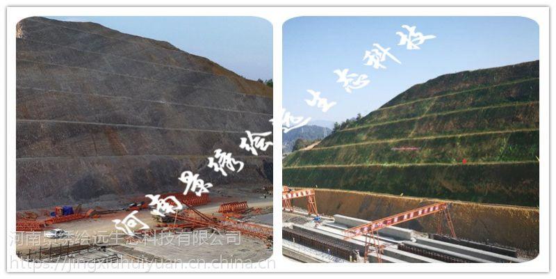 挂网喷播植草 矿山修复工程 矿山植被恢复-河南景绣