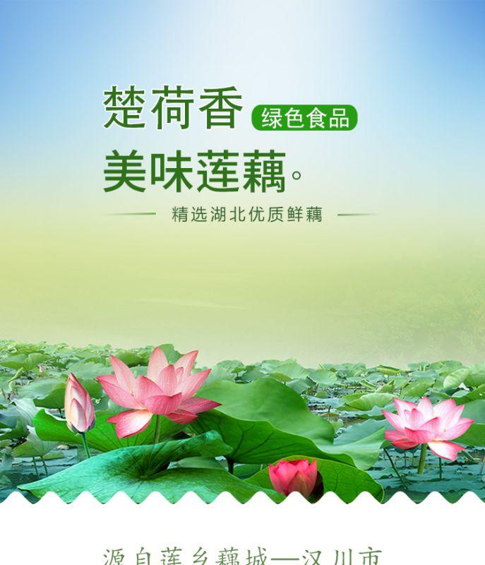 【楚荷香】鄂特产生藕片袋装半成品500g清水藕片湖北特产新鲜莲藕