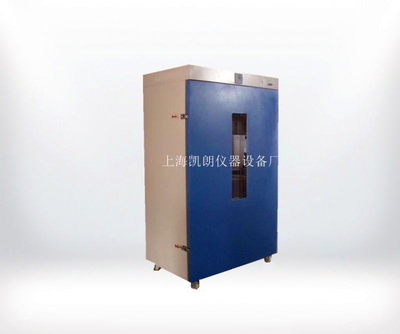 立式250度电热恒温鼓风干燥箱 DHG-9920A老化箱
