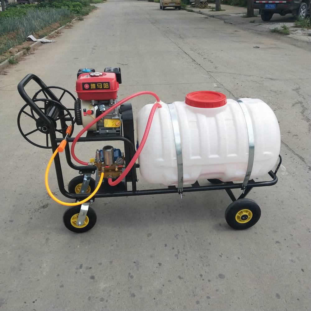 农用杀虫喷雾器 果园果树杀虫打药机 乐丰机械