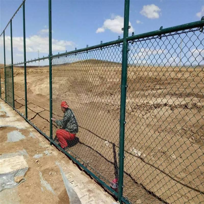 绿色球场防护网 运动场围栏 养殖护栏网