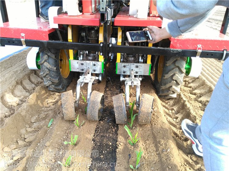 移栽机安全环保无噪音售后服务完善的番茄2ZBX-2型载苗神器宁津田耐尔