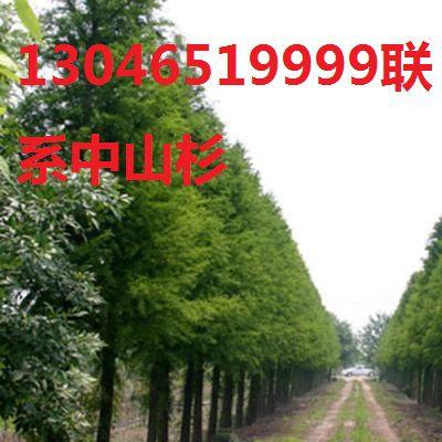 http://himg.china.cn/0/4_131_236856_400_400.jpg