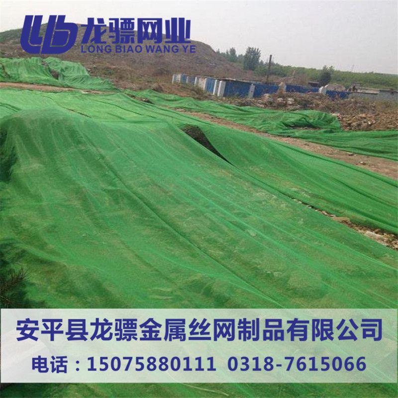塑料盖土网 防尘网现货 绿色临时绿化网