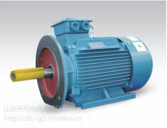 供应山东开元电机公司 三相异步电动IP23 6304-8高效节能电机028297