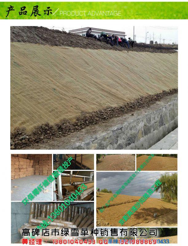 张家港草毯 【绿雪公司】 植物纤维毯订做