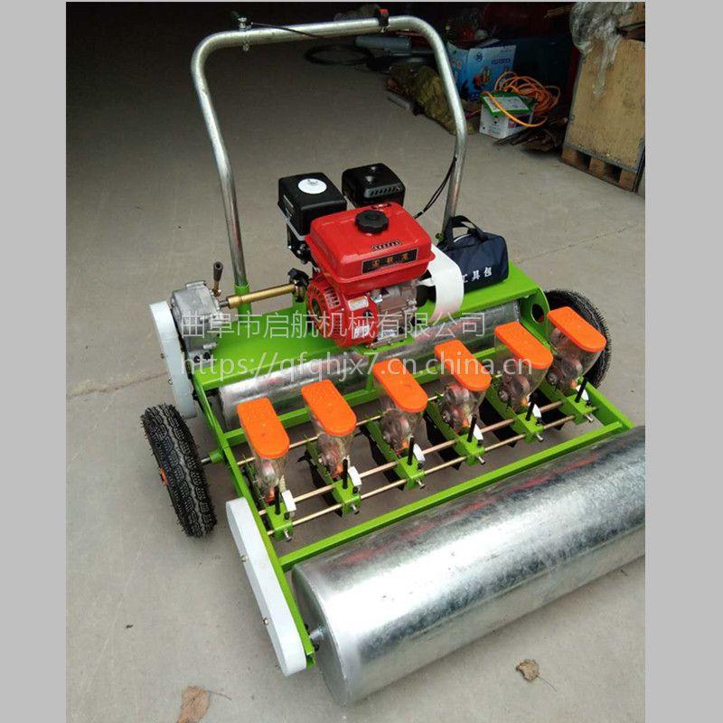 拖拉机牵引的多行谷子播种机 启航人力蔬菜种子精播机 香菜油菜精播机价格