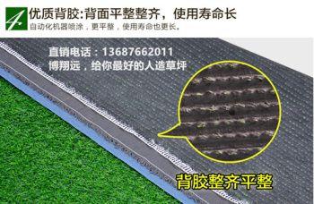 【经验谈如何正确购买】 35mm加密人造草坪仿真草坪 无毒