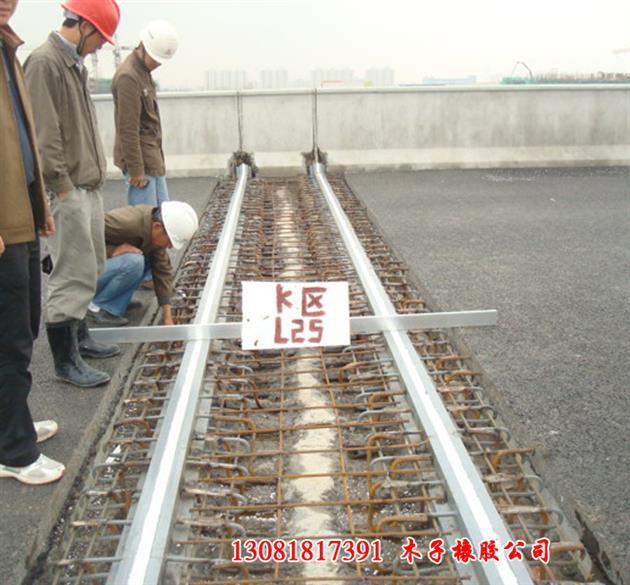 http://himg.china.cn/0/4_138_1081483_630_585.jpg