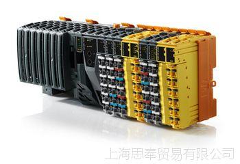 原装B&R 贝加莱 电源模块8LSA75.R0030C600-0  8LSA75.R0030C700-