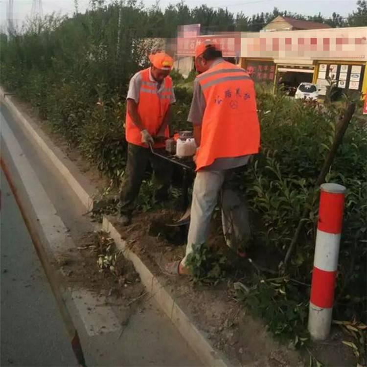 围栏种植挖眼机 方便省力挖坑机